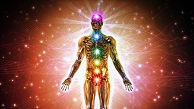 Who You are and What is Your Energy System?
