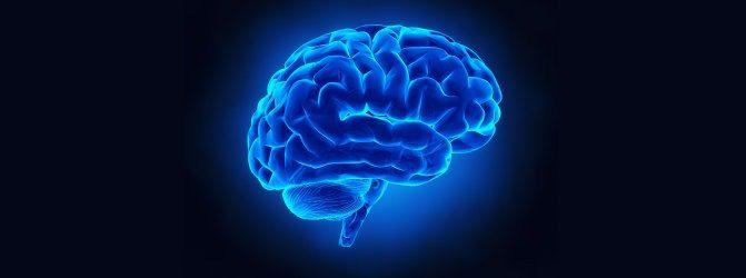 brain Metabolic disorders nervous system