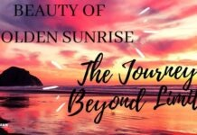 BEAUTY OF GOLDEN SUNRISE (The Journey Beyond Limits)